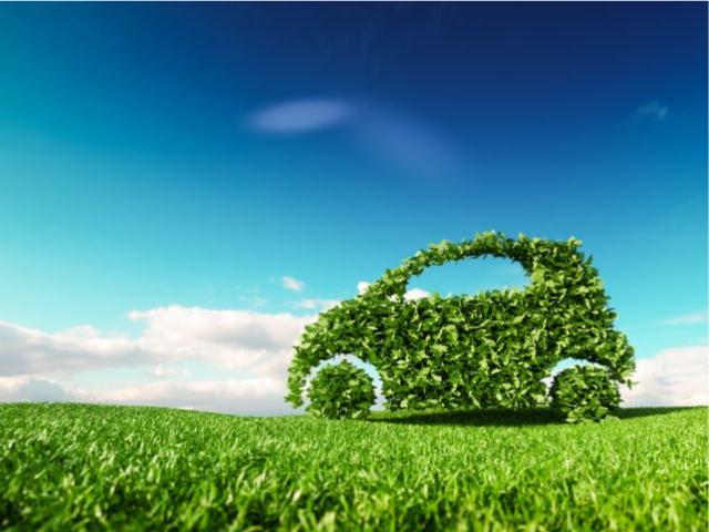 Eco Friendly Car Tax